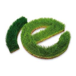 Grünes Gras Logo zur Wand Beschriftung