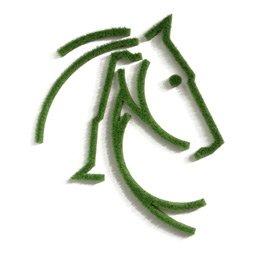 Pferdebild aus Gras als Bild für die Wand