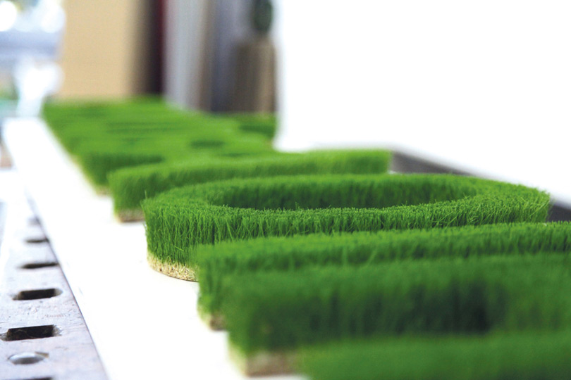 Grass letters grown in cnc moulds