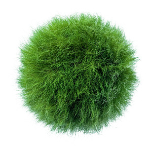 Ball covered with dried and colored grass