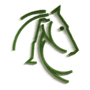 Horse made of real grass as wall picture