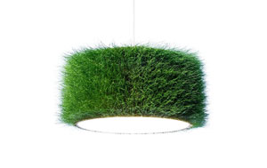 Lamp shade by grassland