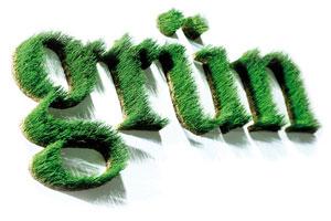 Wort grün von grassland