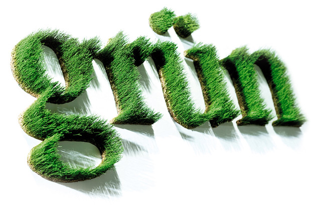 "Art and design lettering ""grün"" (green) made out of grass"