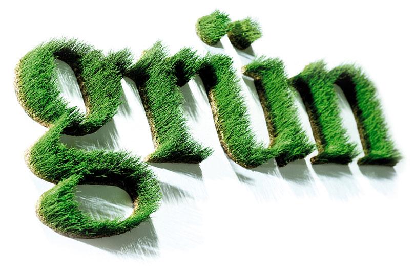 Schriftzug grün aus konserviertem Gras