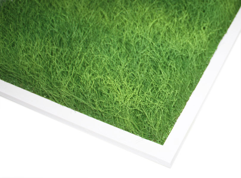 Gras panel as sound absorbing surface