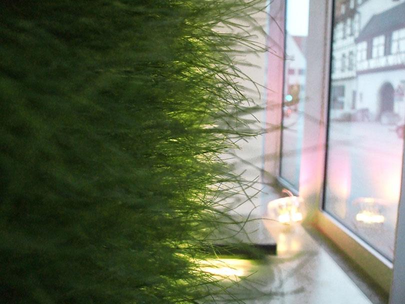 Vertical indoor greening with grass
