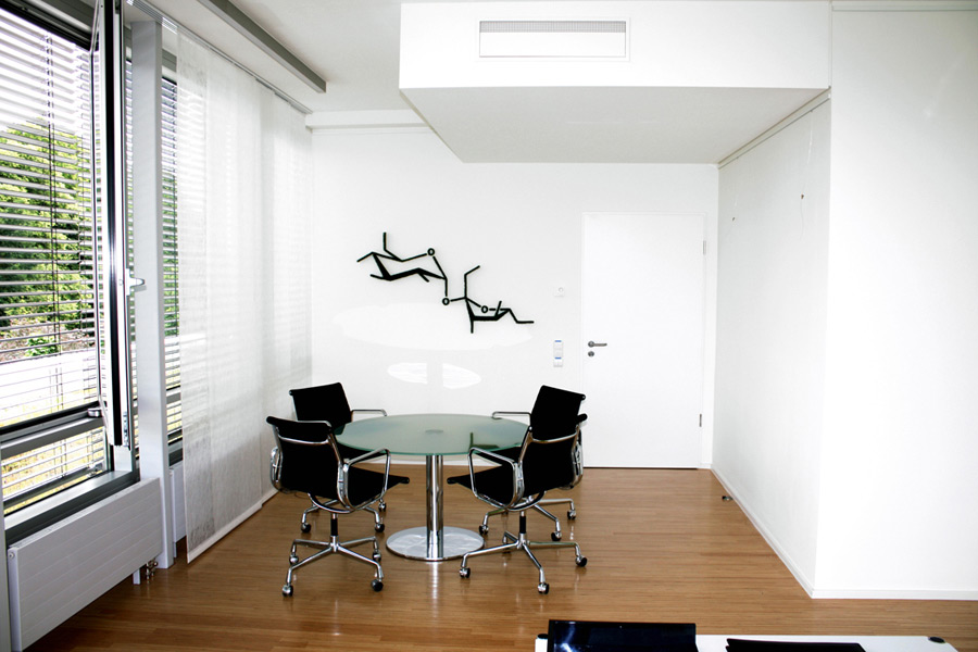 Wall design with dried gras in office
