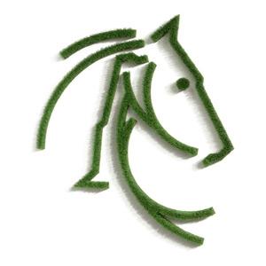 Silhouette Pferd als Wandbild aus Gras